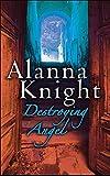 Destroying Angel (Rose Mcquinn Mystery 5) (Rose McQuinn Mysteries)