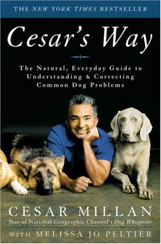Cesar'S Way: The Natural, Everyday Guide To Understanding And Correcting Common Dog Problems front-375346