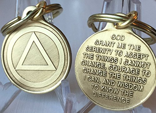 "Circle Triangle AA Key Chain 1"" Bronze Alcoholics Anonymous Key Tag Charm"