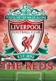 Liverpool Football Club Crest, Anfield Road You'll Never Walk Alone. Stunning Lenticular 3D Poster 29.7x42cm