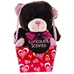 Chocolate Scented Valentine Bear in a Pink Box