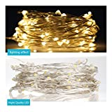 Blusmart USB Copper Lights, 33ft Copper Wire 100 LEDs Holiday Indoor String Light Outdoor Christmas Lights Waterproof Starry String Lights for Christmas, Party, Holiday, Halloween