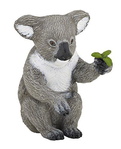 Koala Bear - 1