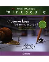 Observe bien les minuscules ! : Lettres, chiffres, formes et couleurs