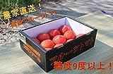 大内ファーム 農家直送! 採れたて 高級フルーツトマト (1kg箱) 数量限定!期間限定!