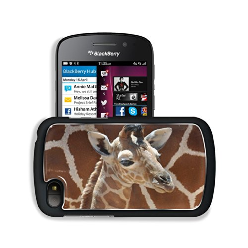 Giraffe Small Calf Face Pattern Cute Baby Africa Wildlife Animal Blackberry Sqn100 Q10 Snap Cover Premium Aluminium Design Back Plate Case Customized Made To Order Support Ready 4 13/16 Inch (123Mm) X 2 12/16 Inch (70Mm) X 8/16 Inch (13Mm) Luxlady Q10 Pro front-1058925