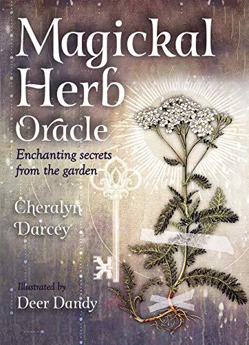 Magickal Herb Oracle (Rockpool Oracle Card Series) [Darcey, Cheralyn] (Tapa Blanda)