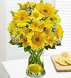 Make Lemonade in a Vase Large by 1-800 Flowers