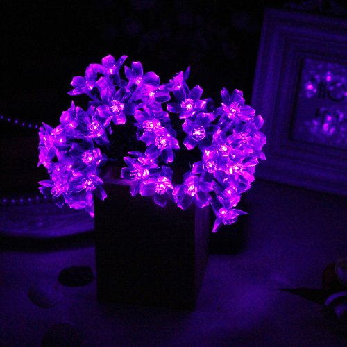 Purple Fairy String Lights : Innoo Tech 50 Led Solar String Lights Outdoor Fairy Purple Blossom Decorative eBay