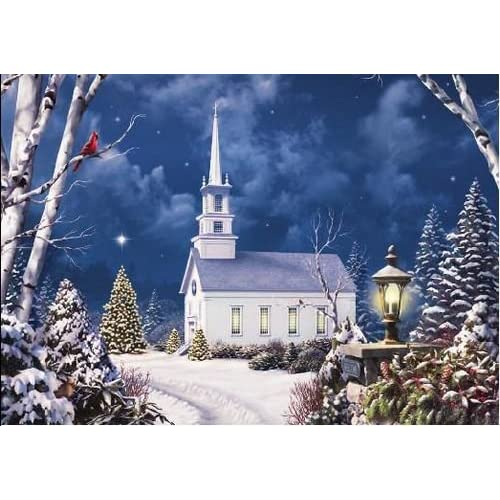 National Geographic Winter Scene Christmas Card Health