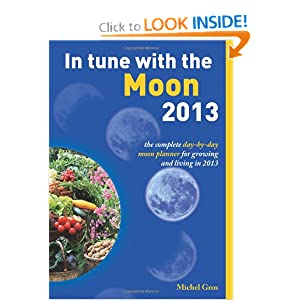In Tune With The Moon Review