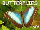 Children s Book: Butterflies (Amazing Pictures Of Animals For Kids)(Beginner Readers eBook Series for age 2-6)