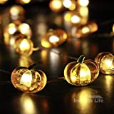 IMPRESS LIFE Pumpkin String Lights 10 ft Copper Wire 40 LEDs Battery-powered for Indoor, Outdoor, Thanksgiving, Harvest, Halloween, Baby Shower Parties, DIY Dorm Decor with Remote and Timer