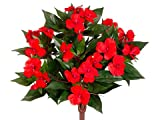 "13.5"" New Guinea Impatiens Bush Tomato Red (Pack of 6)"