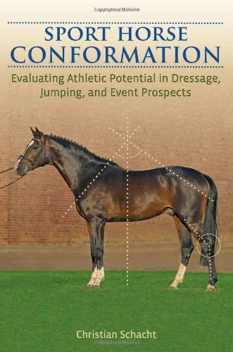 Sport Horse Conformation: Evaluating Athletic Potential in Dressage, Jumping and Eventing Prospects