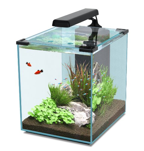 aquatlantis nano cubic 20 30 40 liter nano aquarium set. Black Bedroom Furniture Sets. Home Design Ideas