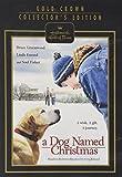 A Dog Named Christmas DVD (Hallmark Hall of Fame)