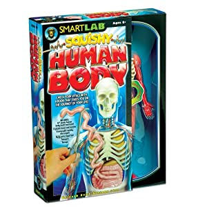 SmartLab Toys Squishy Human Body: Toys & Games