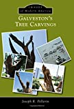 img - for Galvestons Tree Carvings (Images of Modern America) book / textbook / text book