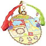 Fisher-Price Luv U Zoo Musical Activity Gym