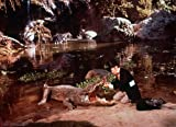 Image de Doctor Dolittle (1967) Blu-ray