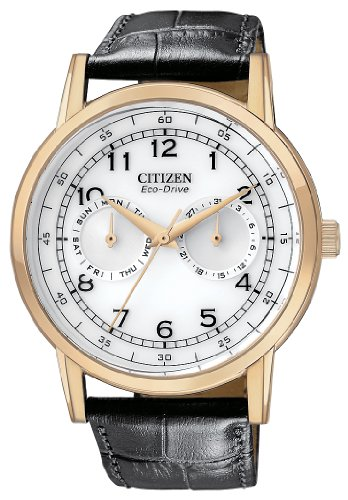 Citizen Men's AO9003-16A Eco-Drive Rose Gold Tone Day-Date Watch