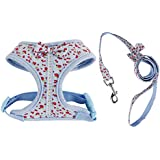 Imported Sweet Floral Dog Puppy Harness Leash Lead Walking Collar Vest Strap Blue S