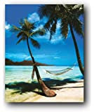 Hammock Tropical Palm Trees Beach Nature Scenic Travel Poster 16 x 20 inches