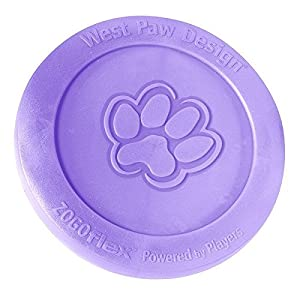 West Paw Design Zisc Flying Disc, Large, Lily