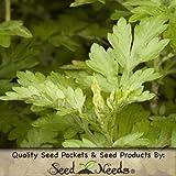 200 Herb Seeds, Mugwort (Artemisia vulgaris) Seeds by Seed Needs