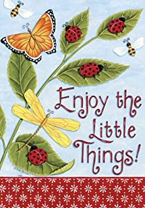 Enjoy the Little Things Large Flag Ladybugs Butterflies