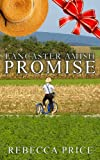 Lancaster Amish Promise - Book 3 (The Lancaster Amish Juggler: An Amish of Lancaster County Saga series)