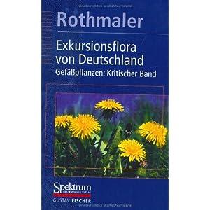 Exkursionsflora von Deutschland, 4 Bde., Bd.4, Gefäßpflanzen, Kritischer Band