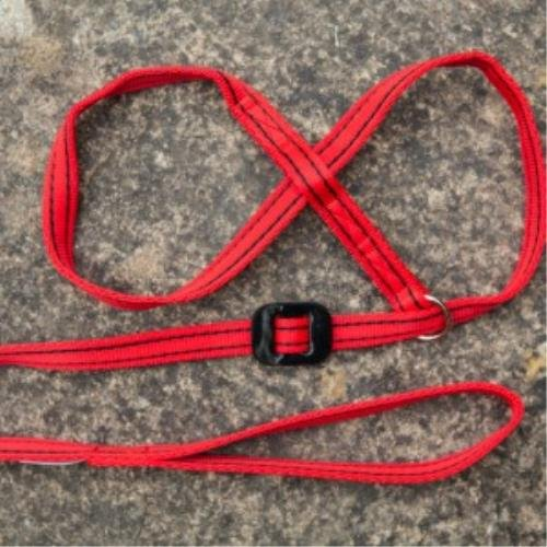 gencon-all-in-1-dog-headcollar-lead-in-one-red-black