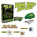 Real Bug Digging Kit - Excavate 3 Genuine Specimens!by Discover with Dr. Cool