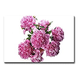 So Crazy Art - Canvas Print Wall Art Painting For Home Decor,Pink Peonies In White Background Paintings Modern Giclee Stretched And Framed Artwork Oil The Picture For Living Room Decoration,Flower Pictures Photo Prints On Canvas