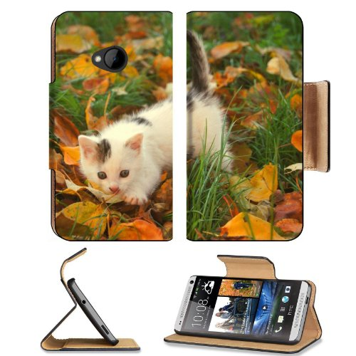 Kitten Baby Spotted Leaves Autumn Htc One M7 Flip Cover Case With Card Holder Customized Made To Order Support Ready Premium Deluxe Pu Leather 5 11/16 Inch (145Mm) X 2 15/16 Inch (75Mm) X 9/16 Inch (14Mm) Liil Htc One Professional Cases Accessories Open C front-52337