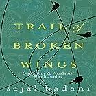 Summary & Analysis of Trail of Broken Wings by Sejal Badani Hörbuch von  Book Junkie Gesprochen von: Doug Greene