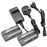 DSTE® 2pcs BP-915 Replacement Li-ion Battery + Charger DC25U for Canon Ultura V40, Ultura V40Hi, Ultura V400, Ultura V420, Ultura V50Hi, Ultura V500, ES300V, ES-300V, ES410V, ES-410V, ES4000, ES-4000, UC-X2Hi, UC-X30Hi, UC-X40Hi, UC-X45Hi, UC-X50 etc ...