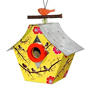 Rosso's International Musical Retro Chic Birdhouse