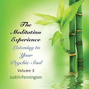 The Meditation Experience: Listening to Your Psychic Soul, Vol. 3 Speech