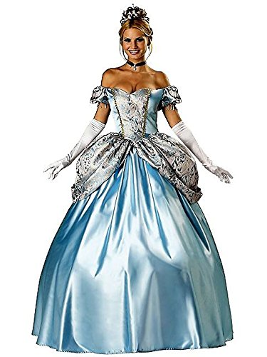Women's Elite Enchanting Princess Costume