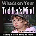 What's on Your Toddler's Mind: A Roadmap to Toddler Thinking and Behavior