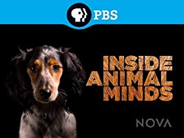 NOVA: Inside Animal Minds Season 1 [HD]