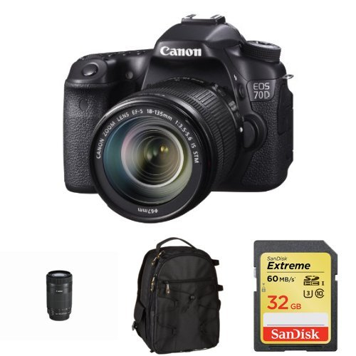 Canon EOS 70D with 18-135mm STM and 55-250mm STM Lens