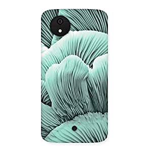Shell of Ocean Back Case Cover for Micromax Canvas A1