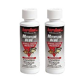 KORDON Methylene Blue-General Disease Prevention Treatment for Aquarium, 4-Ounce [2-Pack]