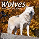 Wolves  2013 Wall Calendar