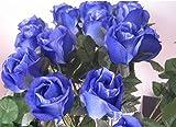 Amateras 神秘的 美しい 赤い & 青い バラ 20本 造花 薔薇 ローズ ブルー レッド 青 赤 オシャレ インテリア 結婚式 パーティー グッズ イベント 誕生日 プレゼント ギフト 贈り物 【AM410】 (青いバラ20本)