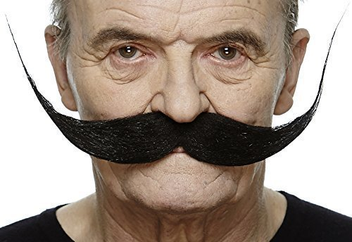 Large Dali moustache
